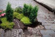 Gerilla bahçeciliği, Doğu Londra