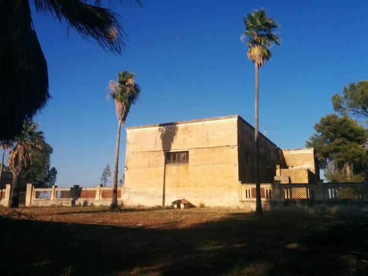 Köyün üretim yerlerinden biri, zeytinyağı fabrikası. Mekanın içinde otlar ve ağaçlar büyümekte.